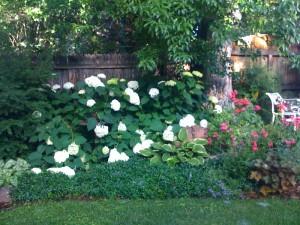 Boulder's Secret Gardens