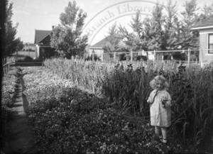 Extending Boulder's Urban Farming Heritage
