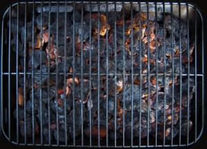 Vegan Shuts Down Barbeque