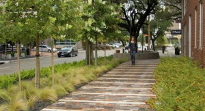 Huffington Post | Greening Our Streets