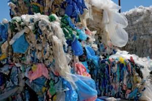 41 Million Plastic Bags