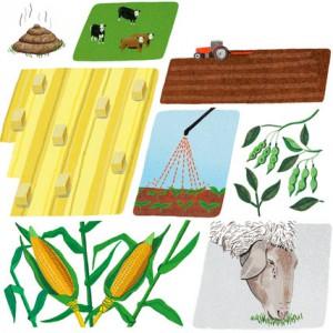 NYTimes.com | A Simple Fix for Farming