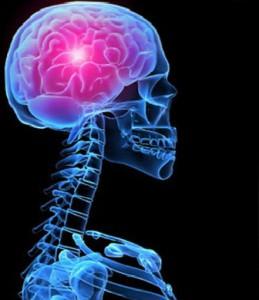 Digital Journal | Power robs the brain of empathy